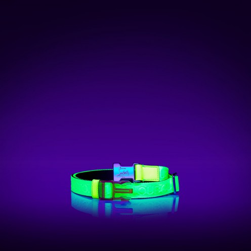 Belt - Loubiclic Belt - Christian Louboutin_2